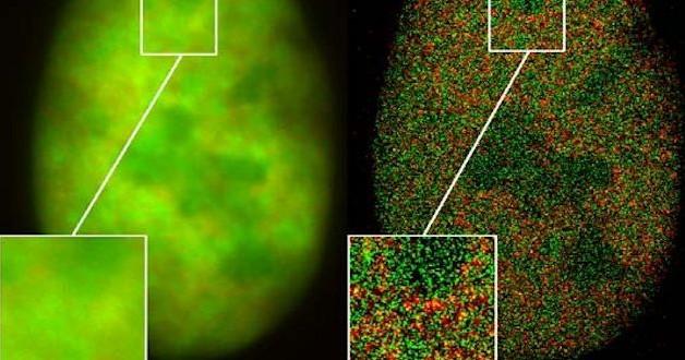 Nobelprijs voor supermicroscopie